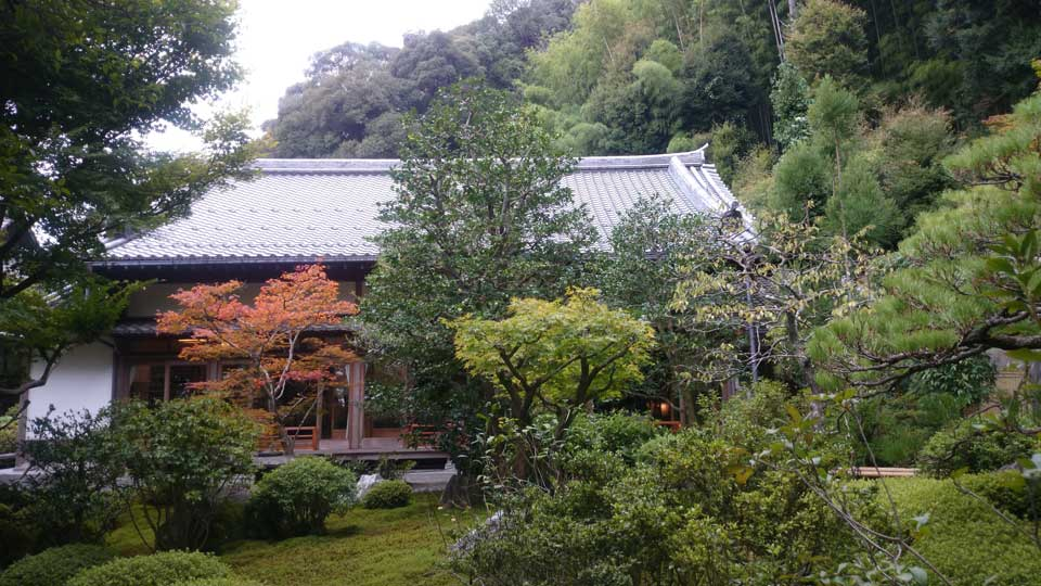 庭からみる鈴虫寺